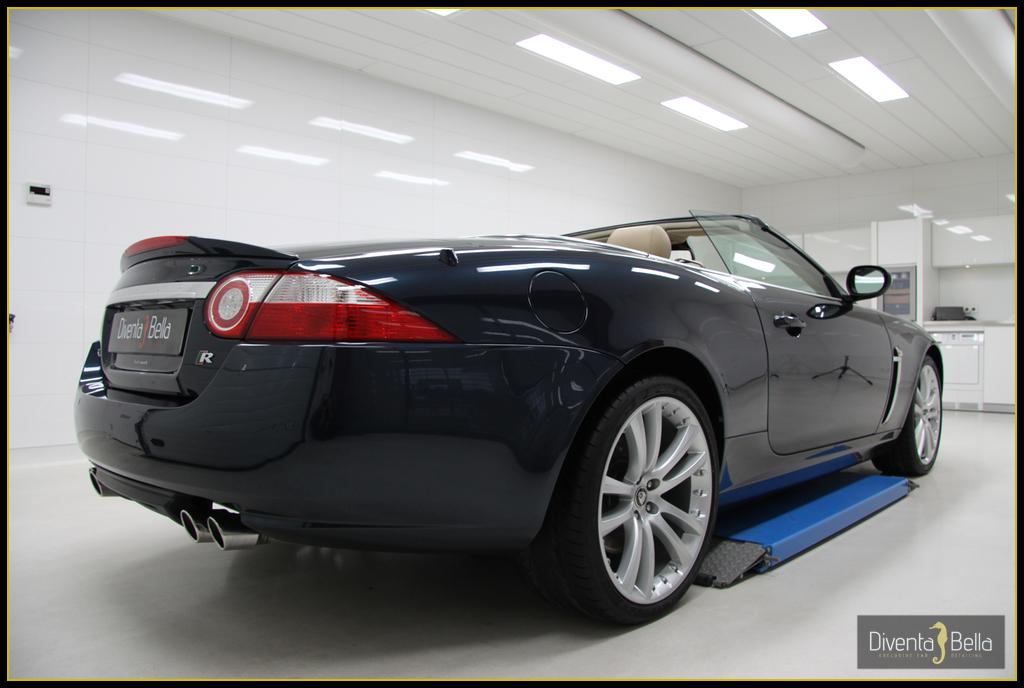jaguar05.jpg