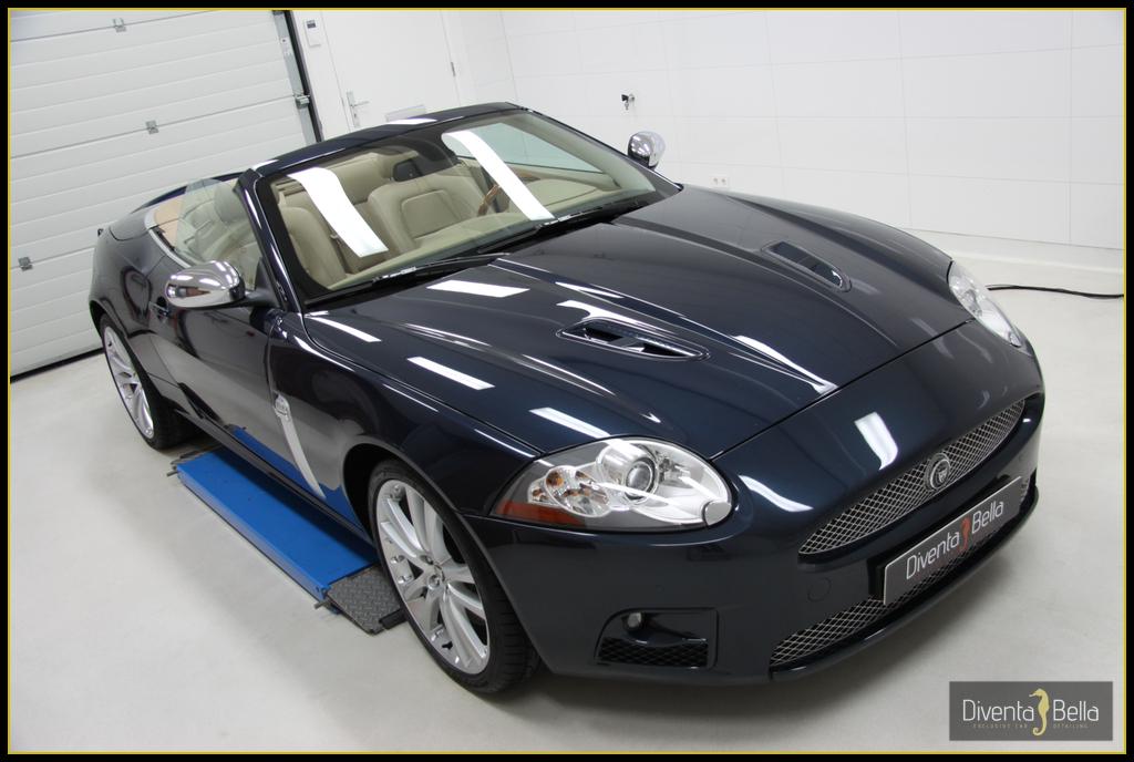 jaguar09.jpg