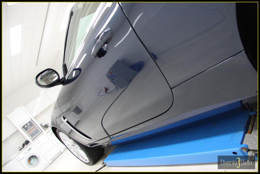 jaguar10.jpg