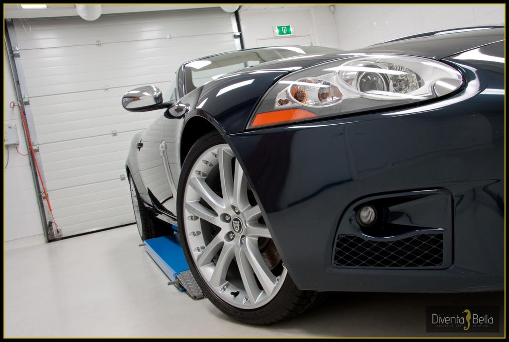 jaguar14.jpg