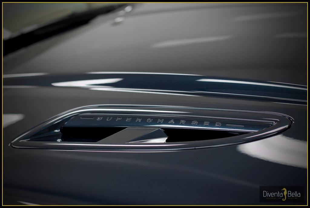 jaguar15.jpg